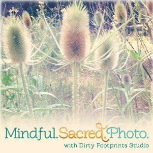 28ea4-mindfulsacredphoto_btn2_large