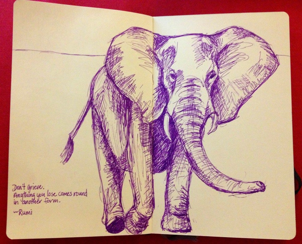 b5987-elephantsketch1