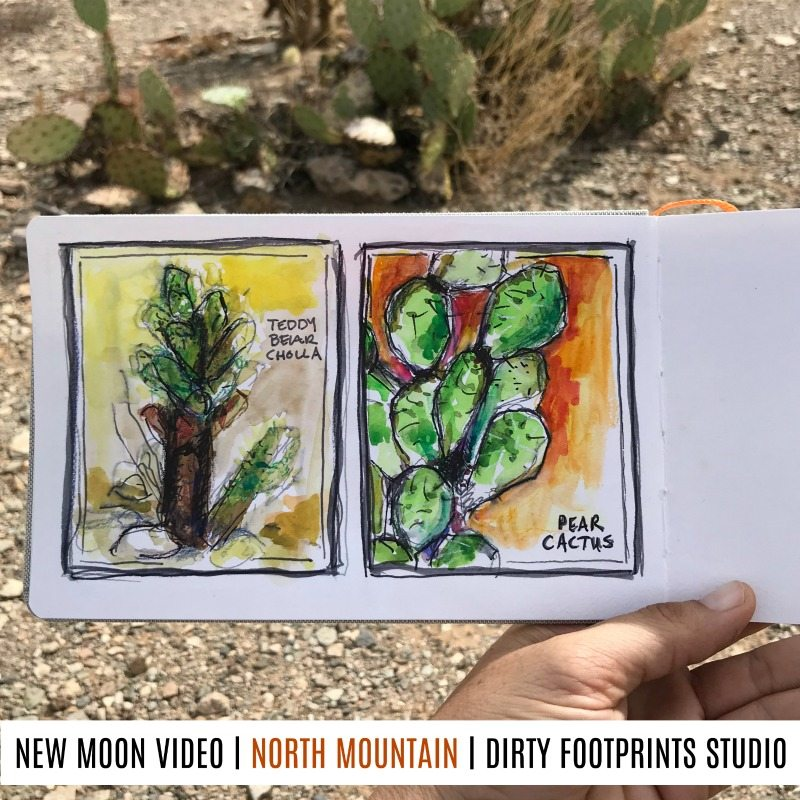NEW MOON VIDEO NORTH MOUNTAIN