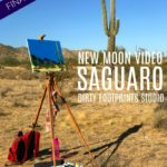 New Moon Video :: Saguaro (Final Episode)