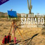 New Moon Video :: Saguaro (Final Episode)