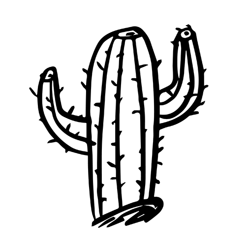 Workshop-vector-cactus-01